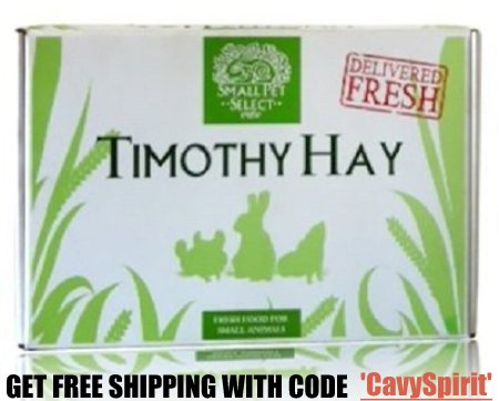 Small Pet Select Hay with Discount Coupon